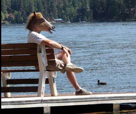 modelo de máscara de cabeça de cavalo